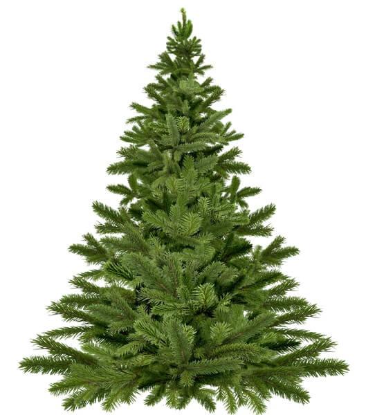 Hoe viert u een groene kerst?